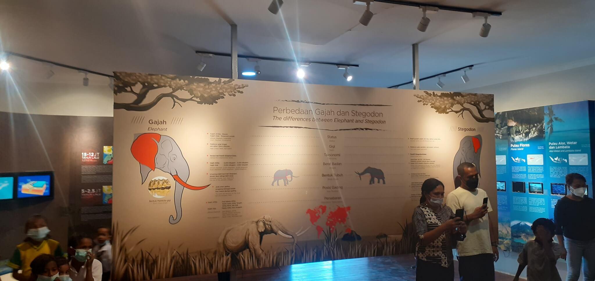 Pusat Informasi Geologi - Museum Daerah NTT
